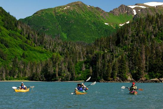 Kachemak Bay Wilderness Lodge: Guided Kayaking