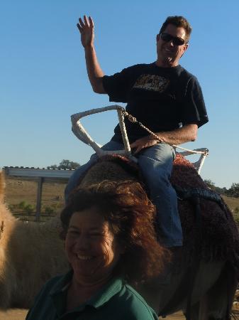 Oasis Camel Dairy: Yeehaa!