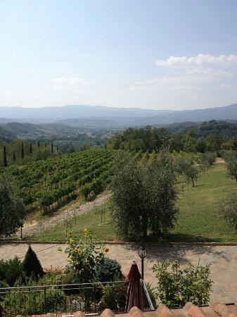 Agriturismo Savernano: A Room with a View