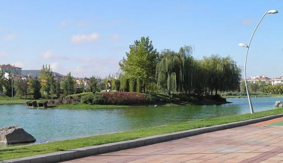 Kent Park: A small island in the lake