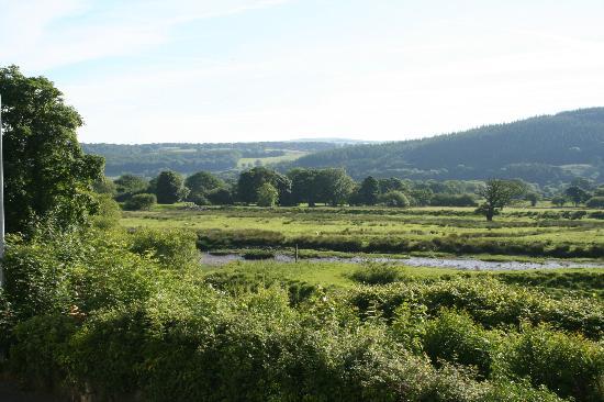 Princes Arms Hotel: View downriver