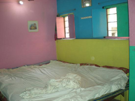 Monu Family Paying Guest House: our room