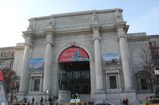 American Museum Of Natural History Entrance Fee