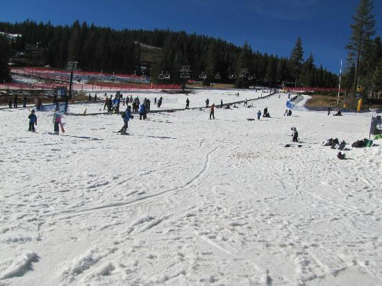 Big Horn Lodge - Tahoe Mountain Lodging: Beginners Skii Area