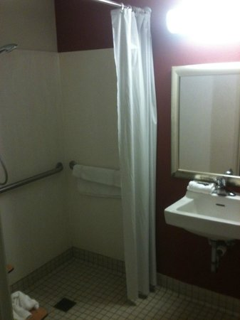 Red Roof Inn Charleston - Kanawha City: The bathroom