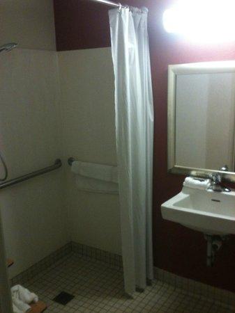 Red Roof Inn Charleston - Kanawha City, WV: The bathroom