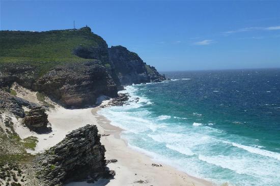 The Cape Town Tour Guide Co. : Cape beach