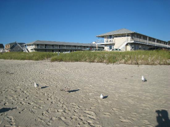 Friendship Oceanfront Suites: View of the Hotel from the beach