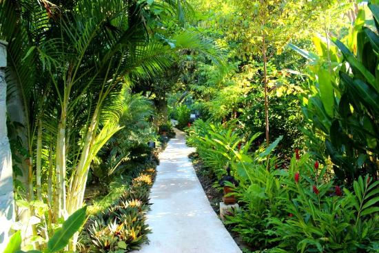 Pranamar Villas and Yoga Retreat: walkway