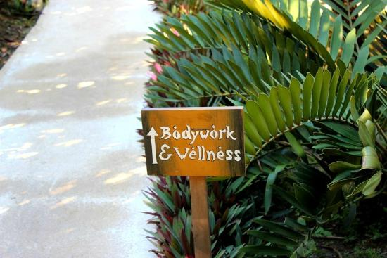 Pranamar Villas and Yoga Retreat: path