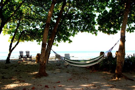 Pranamar Villas and Yoga Retreat : beach