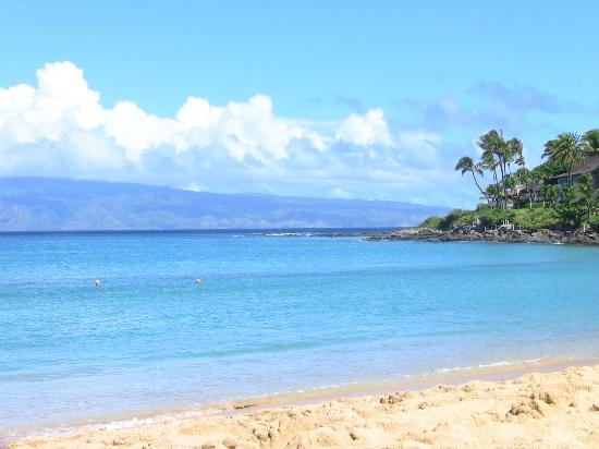 Best Seafood Restaurant In West Maui