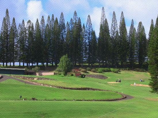 The Gardens at West Maui Hotel: View from Room at the Kapalua resort