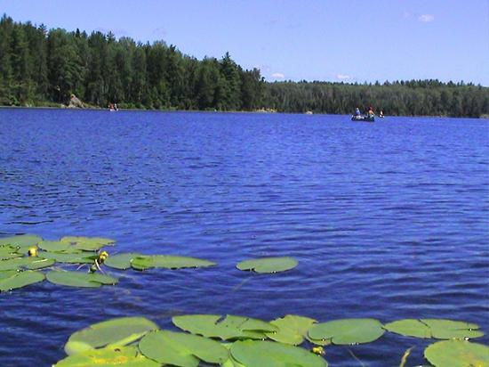 Timber Trail Lodge and Outfitter: beautiful canoeing & kayaking on Farm & South Farm Lakes.ke.