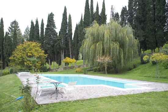 Villa Campestri Olive Oil Resort: The Villa's swimming pool