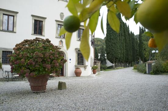 Villa Campestri Olive Oil Resort: View of the Villa from the guest house.