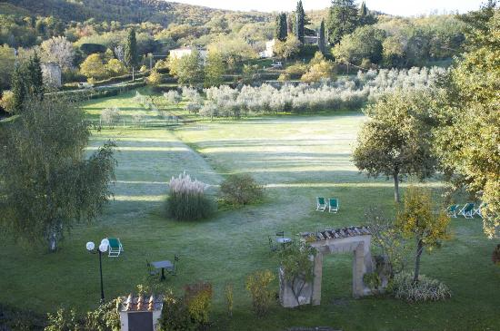 Villa Campestri Olive Oil Resort: View from my room facing the olive groves.