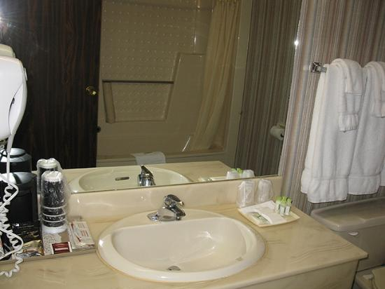 Fredericton Inn: Standard Bathroom