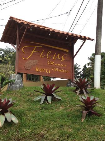 Ficus Sunset Suites Hotel: Front Sign