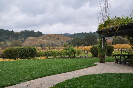 Dutcher Crossing Winery: View from the open picnic area at Dutchers Crossing Winery