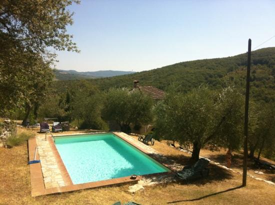 Locanda La Capannuccia: vue sur la piscine