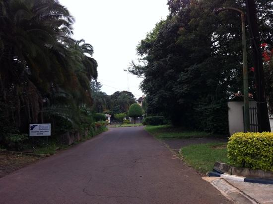 Gigiri Homestead: The lush vegetation on the street.