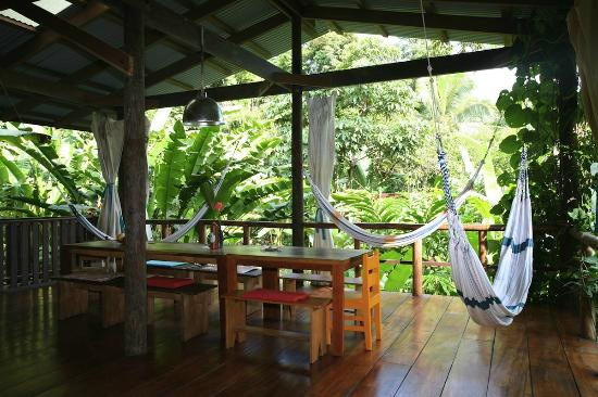 La Loma Jungle Lodge and Chocolate Farm: The lodge