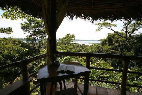 La Loma Jungle Lodge and Chocolate Farm: The View from Cabin 2