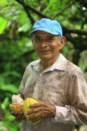 La Loma Jungle Lodge and Chocolate Farm: Mr. Ellington with Cacao pod