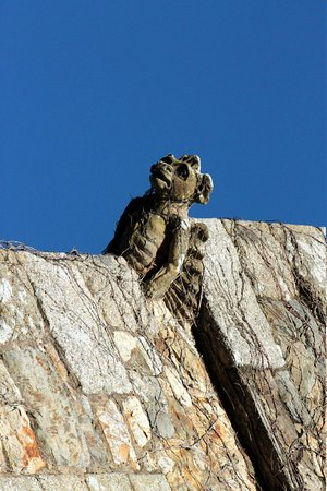 Waterford Castle Hotel & Golf Resort: One of the Gargoyles