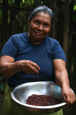 La Loma Jungle Lodge and Chocolate Farm: Bolivia with cacao nibs