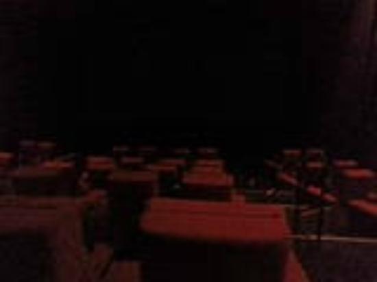 iPic Theater: Inside theater #5
