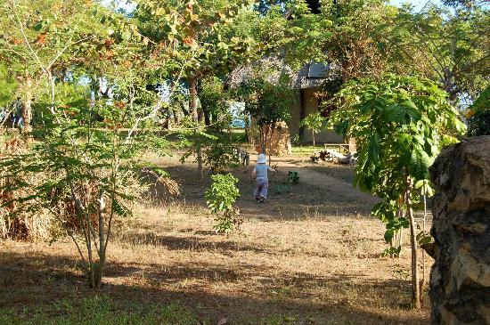 Shamba Kilole Eco Lodge Area