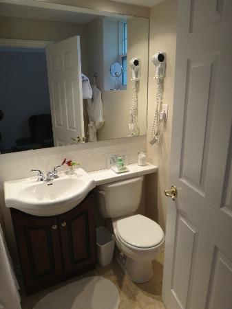 Green Acres Inn: Small but clean bathroom
