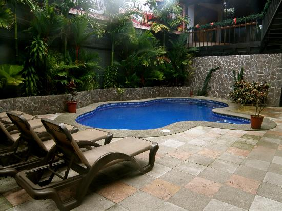 Hostel Pangea: Pool area