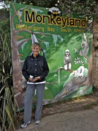 Elephant Hide of Knysna Guest Lodge: Monkeyland - worth a visit.