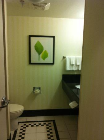 Fairfield Inn & Suites Asheboro: Bathromm