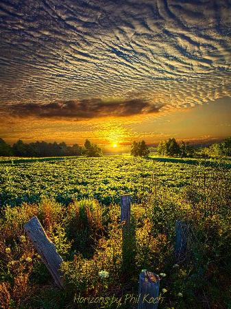 Racine, WI: Wisconsin Horizons by Phil Koch
