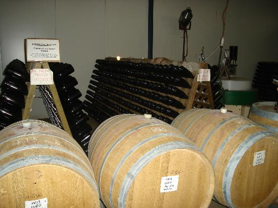 Anderson Winery: Barrels & racks of bottles you can see in our Cellar door