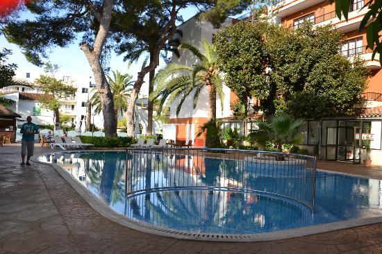 Hotel HSM Venus Playa: Hotelpool