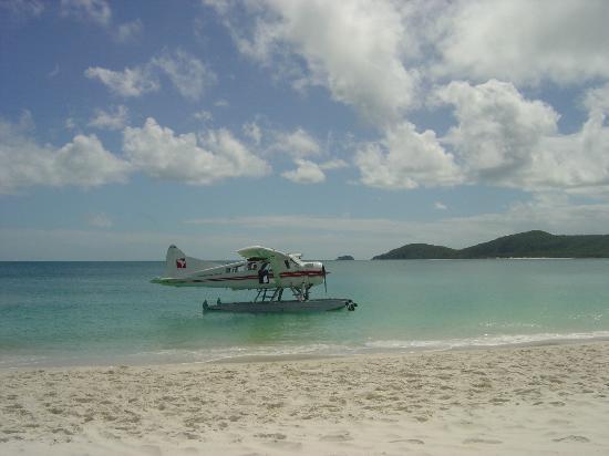 Whitehaven beach mode of transportation