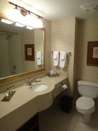 DoubleTree Fallsview Resort & Spa by Hilton - Niagara Falls: Bathroom