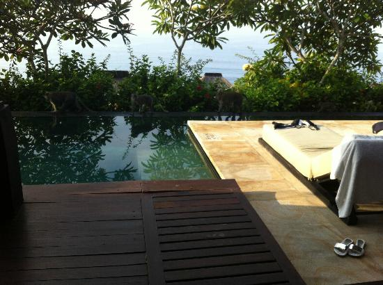 Bulgari Resort Bali: can't have enough