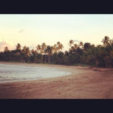 The St. Regis Bahia Beach Resort: beach at St. Regis