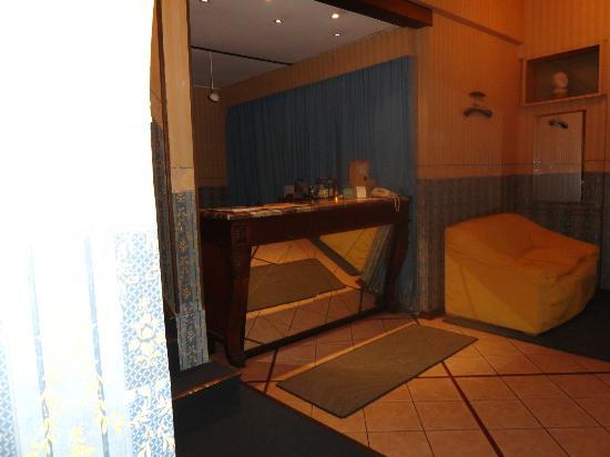 Hotel Esperanza & Artemisa Spa: Recepción 1