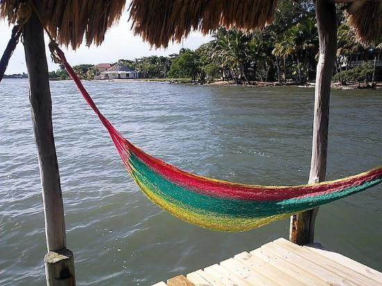 Pelican Beach - Dangriga: Hammock on the wooden dock off the shore