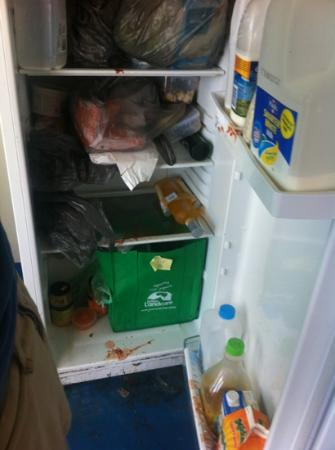 ‪‪Mooloolaba Beach Backpackers‬: fridge