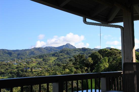 Marjorie's Kauai Inn: view from the lanai
