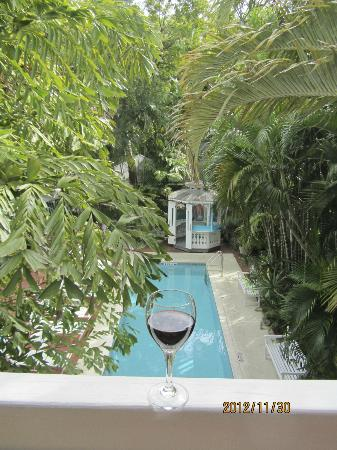 Ambrosia Key West Tropical Lodging: Tree Top room view