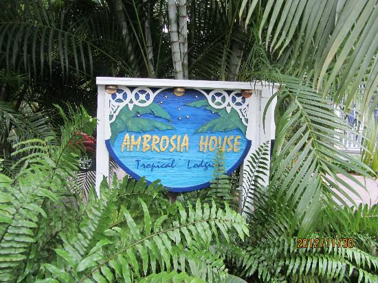 Ambrosia Key West Tropical Lodging: Ambrosia Hotel